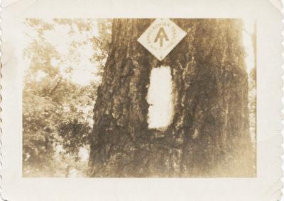 Appalachian Trail marker at the park